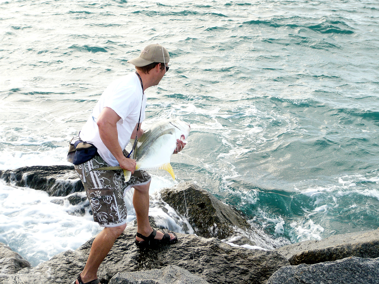 Releasing jack for Island current fishing report